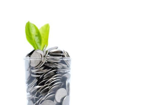 Economizando dinheiro em vidro para seu investimento futuro (hábito).