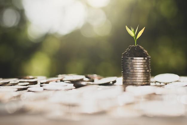 Economizando dinheiro para o futuro.