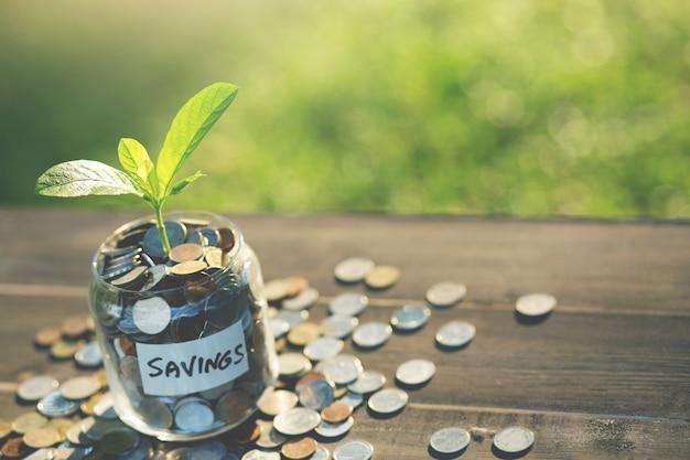 Economizando moeda de dinheiro predefinido de conceito de dinheiro para um futuro crescente.