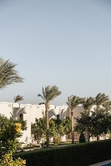 Edifício oriental moderno com paredes bege, palmeiras tropicais e vistas pitorescas.