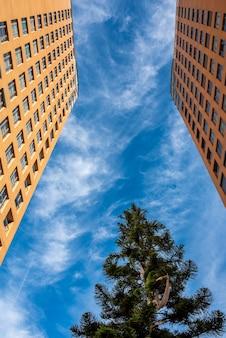 Edifícios verticais de casas com céu azul e árvores no meio.