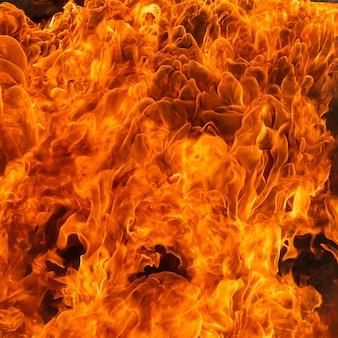 Efeito de chama de fogo para o fundo