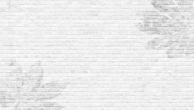 Efeito de sobreposição de sombras de folhas tropicais em uma parede de tijolos brancos. conceito abstrato de alvenaria de natureza neutra fundo desfocado. copie o espaço. cenário de verão do panorama. foto de alta qualidade