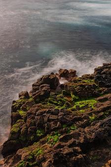El pris rochas vulcânicas com musgo verde, tacoronte, tenerife, ilhas canárias, espanha