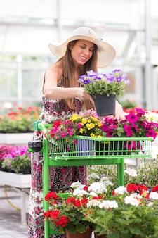 Elegante jovem escolhendo plantas em um viveiro