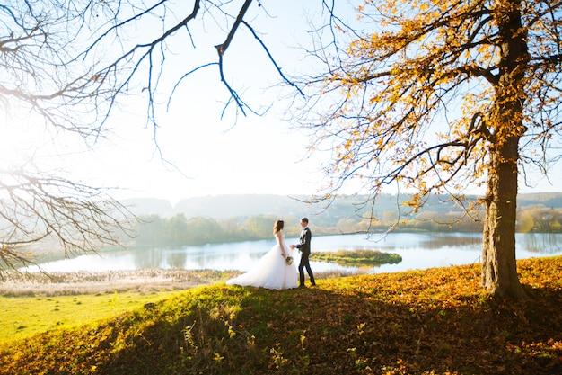 Elegante lindo casal de noivos felizes em uma caminhada no parque ensolarado de outono no dia do casamento