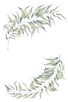 Elementos da planta aquarela isolados no fundo branco galhos com folhas para convite de casamento