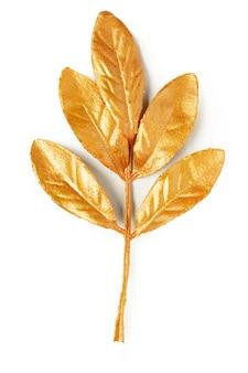 Elementos de design da folha de ouro.