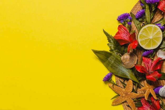 Elementos decorativos com estrelas do mar e flores