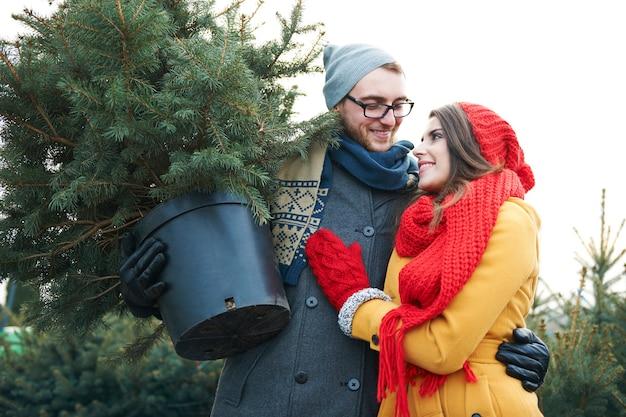 Eles encontraram uma árvore de natal perfeita