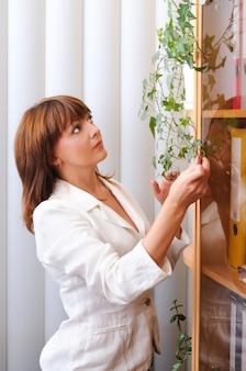 Em pé, adorável mulher morena caucasiana, cuidando de uma planta de casa perto do armário com documentos.