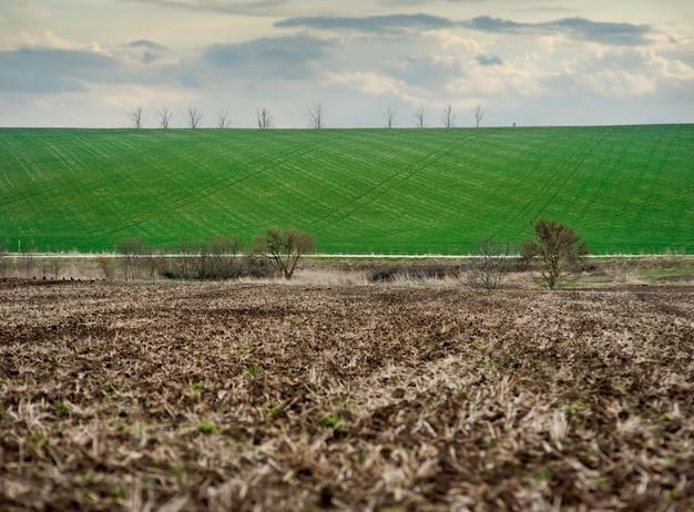 Em primeiro plano, grandes pedaços de solo de um campo arado, ao fundo, um campo verde