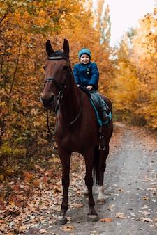 Em um caminho na floresta, um menino em um cavalo no outono