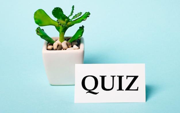 Em um fundo azul claro - um vaso de planta e um cartão branco com a inscrição quiz