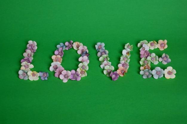 Em um fundo verde claro, a palavra amor está alinhada com flores multicoloridas em letras grandes