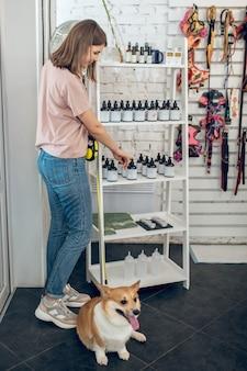 Em uma loja de animais. linda garota com seu cachorro passando um tempo em uma loja de animais