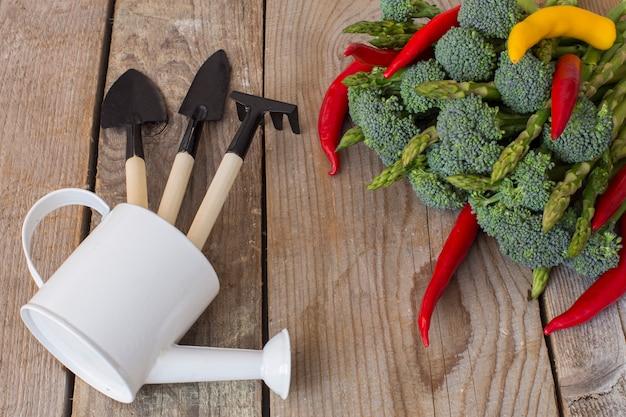 Em uma mesa de madeira legumes: espargos, brócolis, pimentão, rabanete e jardim cuidados itens