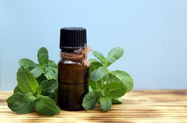 Em uma mesa de madeira, uma garrafa de óleo e um raminho de hortelã. erva verde fresca saudável e aromática.