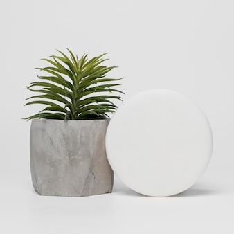 Embalagem de produto cosmético em branco com planta suculenta