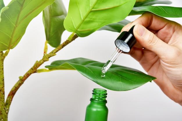 Embalagem de recipientes para frascos de cuidados com a pele natural com pura essência vegetal verde