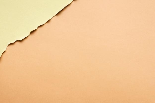 Embalagem neutra de folhas de papelão com espaço para texto