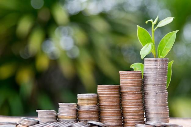 Empilhamento de moedas, salvando o símbolo de crescimento