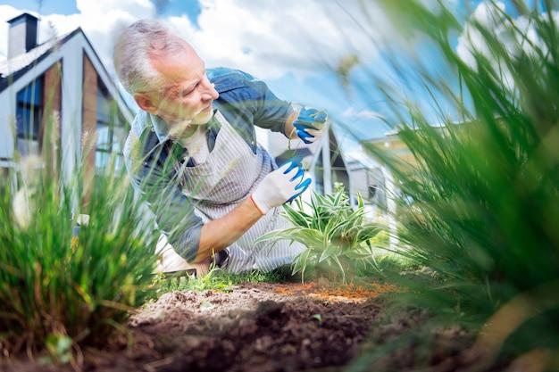 Empresário no fim de semana. homem de negócios maduro e bonito de cabelos grisalhos passando o fim de semana cuidando de seu canteiro de jardim