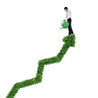 Empresário regando uma grande planta que cresce como uma flecha