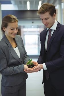 Empresários segurando uma planta juntos no corredor