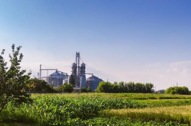 Empresas agrícolas. na cara recipientes de ferro brilhante para armazenar grãos.