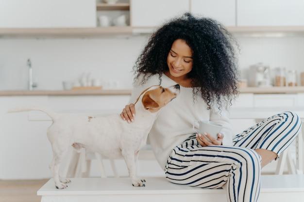 Encantada mulher encaracolada com expressão alegre posa com jack russell terrier cachorro em casa, bebe bebida aromática