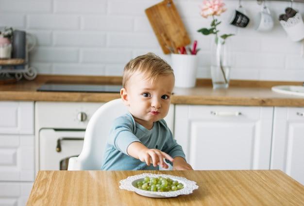 Encantador bebezinho comendo uva verde primeiro alimento na cozinha brilhante em casa