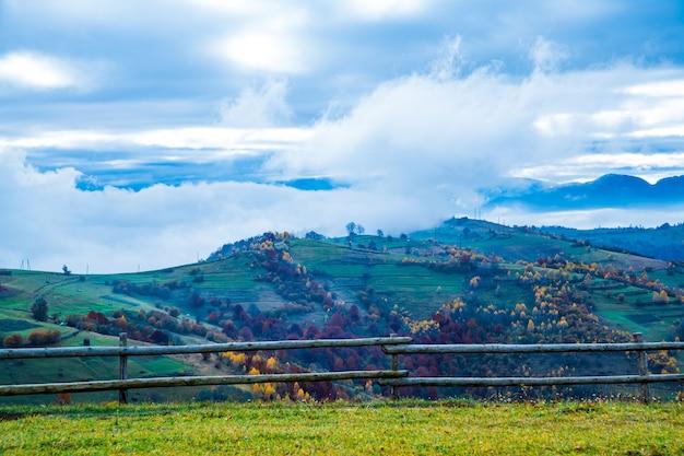 Encantadora linda paisagem de verão de prados verdes