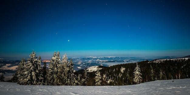Encantadora paisagem mágica de pinheiros altos nevados crescendo entre montes de neve nas colinas contra um céu azul estrelado. conceito de uma bela floresta à noite. copyspace