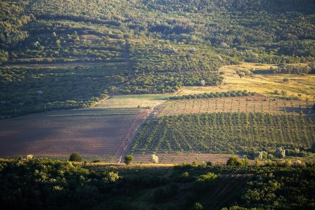 Encosta de colina com árvores em crescimento, estrada de aldeia com um caminhão e floresta na moldávia