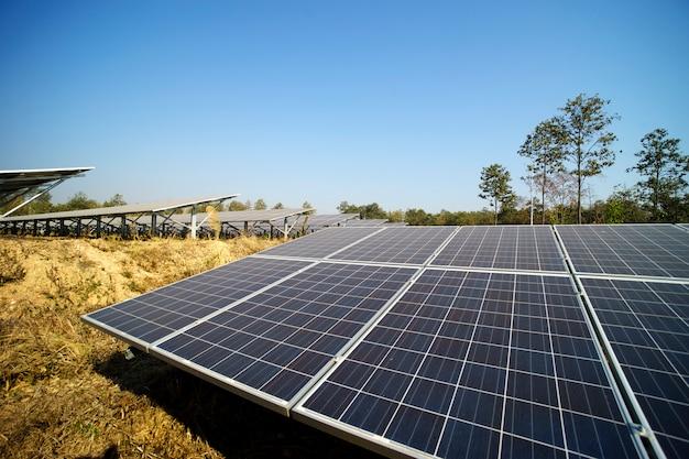 Energia solar fazenda verde da luz do sol