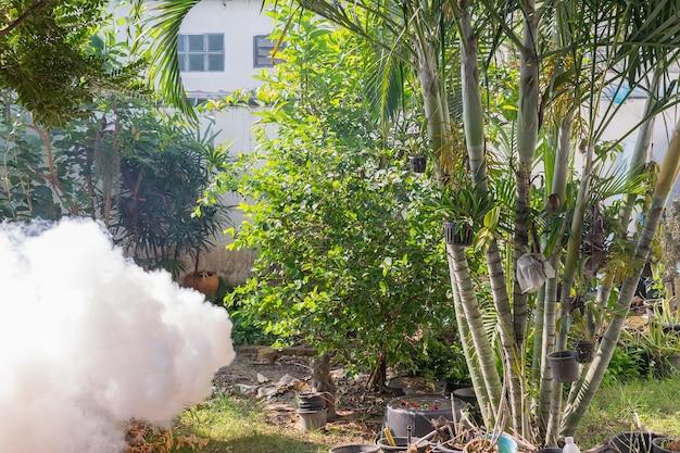 Enevoando o mosquito da matança do pulverizador de ddt