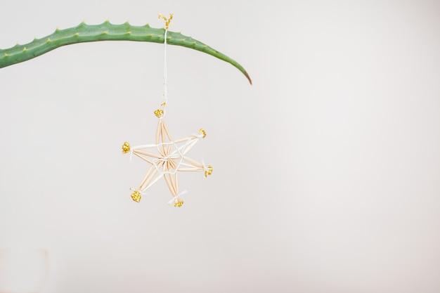 Enfeite de natal de palha no galho de aloe. postura plana