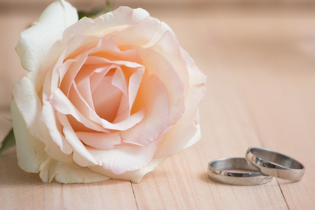 Engajar anel colocado perto rosa pastel rosa. conceito de dia dos namorados