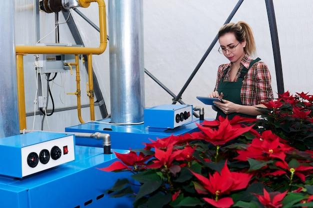 Engenheira agrícola trabalha com equipamentos em uma estufa onde crescem flores de amendoim vermelho