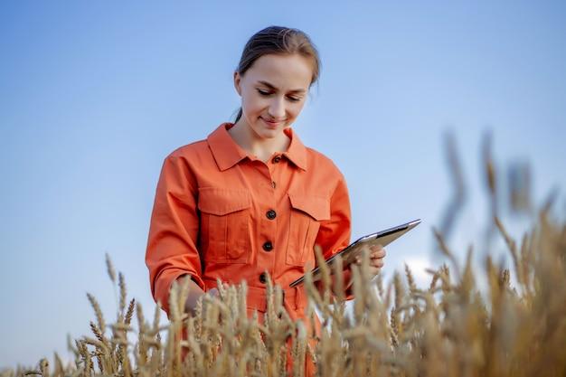 Engenheira agrônoma com computador tablet no campo de trigo, verificando a qualidade