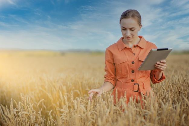 Engenheiro agrônomo de mulher caucasiana com computador tablet no campo de trigo