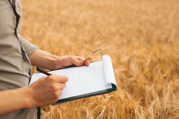 Engenheiro agrônomo escrevendo em um documento o plano de desenvolvimento do trigo.