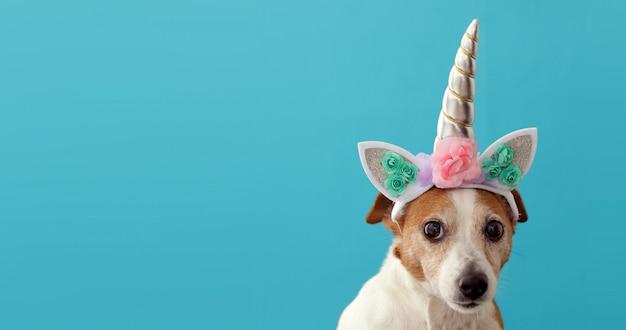 Engraçado unicórnio pequeno cão branco em azul