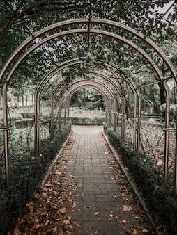 Entrada de arco de metal no parque com folhas de outono