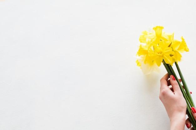 Entrega de flores. florista com as mãos segurando um buquê de narciso amarelo sobre fundo branco.