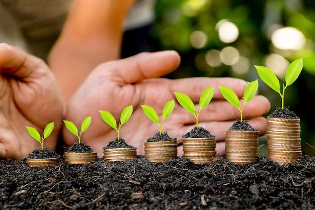 Entregue a colocação da moeda sobre o gráfico crescente da pilha da moeda com bokeh verde, conceito do investimento.