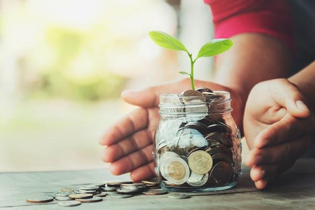 Entregue o dinheiro da proteção com a árvore no vidro do jarro.