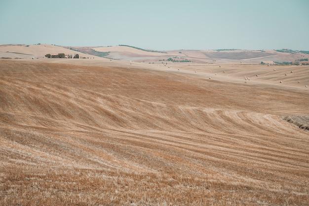 Época de colheita no campo