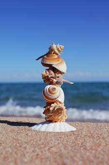 Equilíbrio ou equilíbrio de conchas na praia do mar